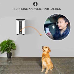 wopet caméra pour chat et chien