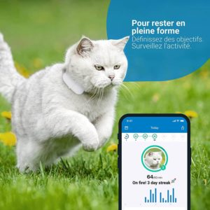 Tractive collier GPS pour chat application mobile